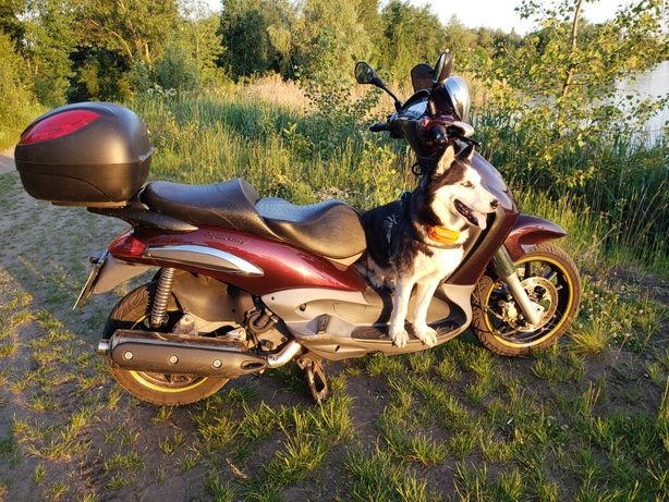 скутер , максискутер , мотоцикл Piaggio Beverly 500, обмен запчасти