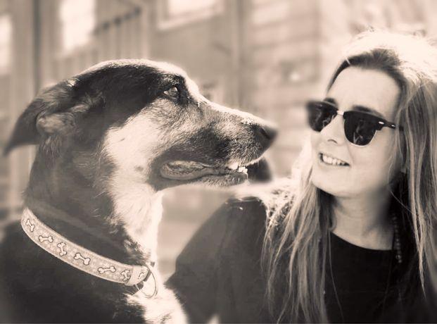 Passeador cães/ Domicílio Gatos