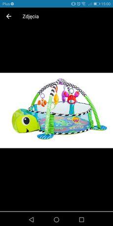Mata edukacyjna żółw