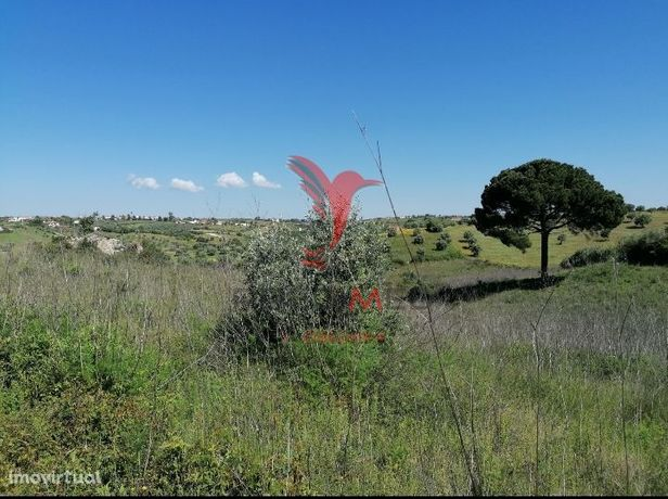 Terreno Rústico - Moçarria.