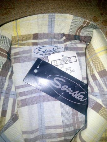 Новая! Рубашка с коротким рукавом в клетку/блузка нарядная кофта 50-5