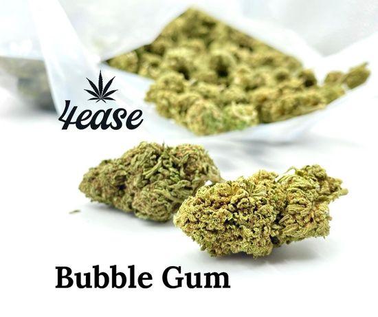 Susz CBD Bubble Gum 100g !!!