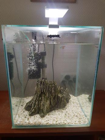 Akwarium krewetkarium  aqusel dla rybek 30l