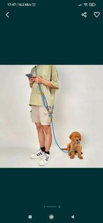 Новый поводок для выгула собак. Бесплатная доставка