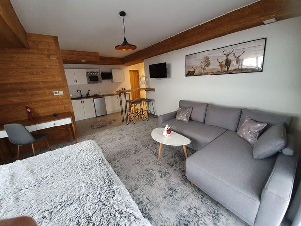 Apartamenty, Domki, Noclegi, w Górach, Zakopane, Bon turystyczny