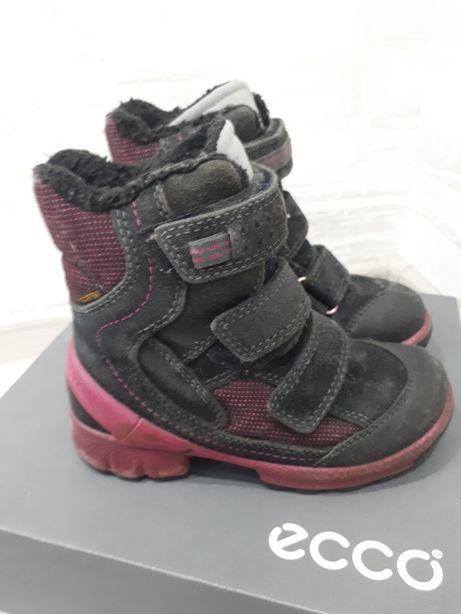 Сапожки Ecco Biom зимние термосапоги ботинки экко