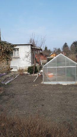 Sprzedam ogródek działkowy