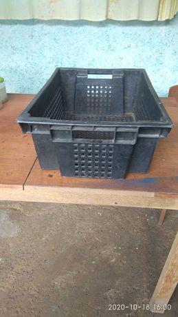 Ящик для овощей и продуктов