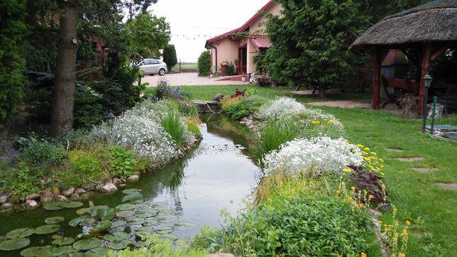 Dom z ogrodem, garażem, altaną, stawem