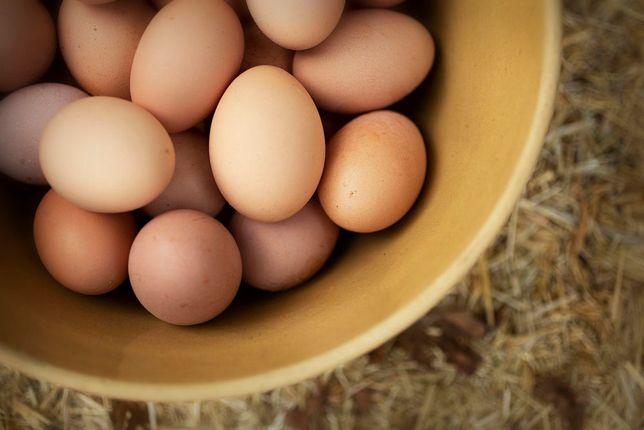 Jaja wiejskie z wolnego wybiegu. Darmowy dowóz. (Jajka)
