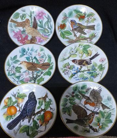 Pratos colecao as nossas aves canoras