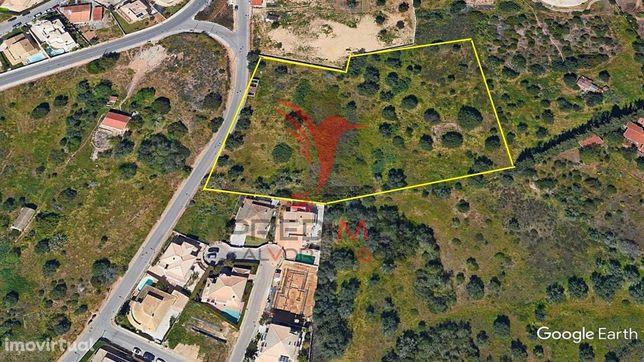Terreno misto com cerca de 1,2 hectares