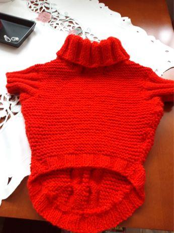 Sweter dla buldoga francuskiego