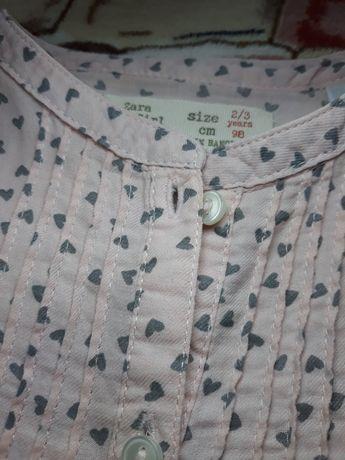 Рубашка, блузка, сорочка Zara