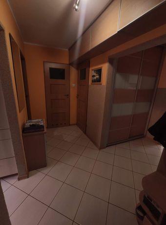 Mieszkanie Raginisa 5