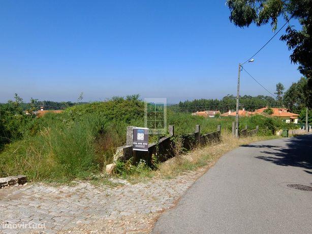 Terreno  Venda em Branca,Albergaria-a-Velha