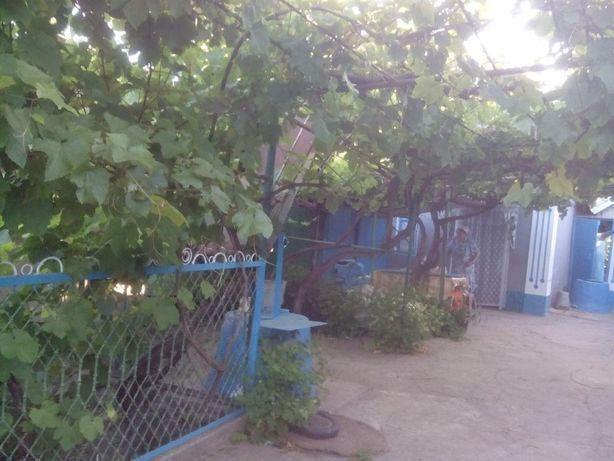 Продам Дом (дача), с большим садом. 35 соток. Лиман-отдых. Одесса-70км