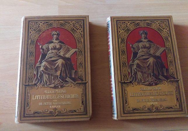 książki Allgemeine Litteraturgeschichte Peter Norrenberg Bytom wys