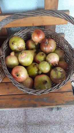 Fruto Romã Boa qualidade