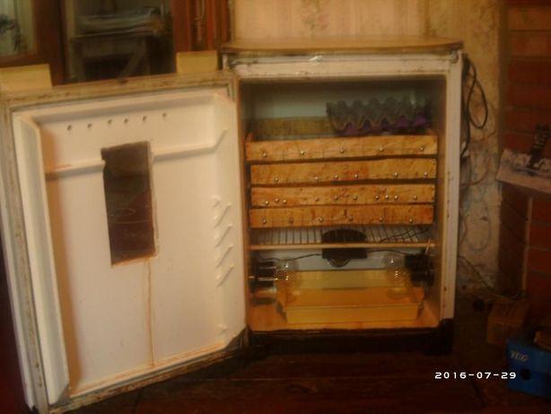 Продам Инкубатор с холодильника