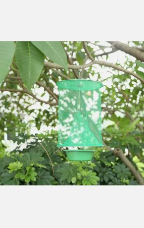 Ловушка для мух, мухоловка