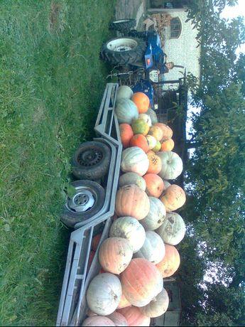 Трактор Jimna 244