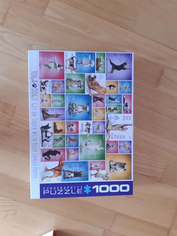 Puzzle Eurographics Yoga Dogs 1000el