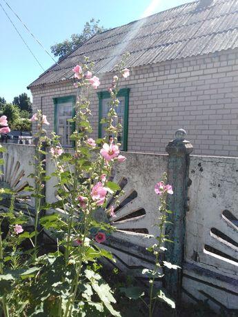 Дом поселок Мирный 3 км 67 кв м
