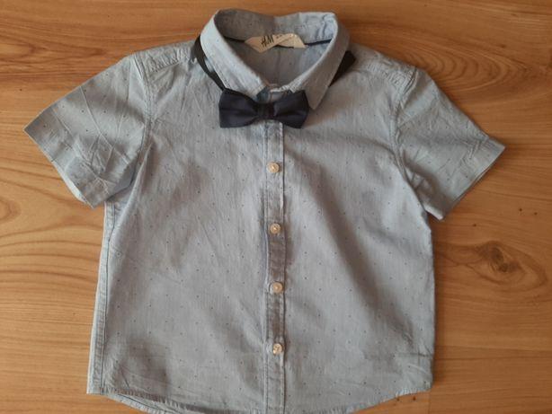 Koszula H&M, r. 104