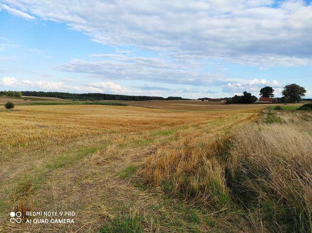 Ziemia rolna 5,45 ha / Łędławki, powiat Bartoszycki