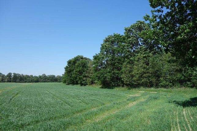 Skoczów Ochaby 62ar rolna pod rekreacje widokowa nadaje się pod staw