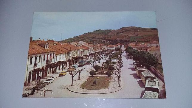 Postal antigo Bragança - Av. João da Cruz - portes grátis