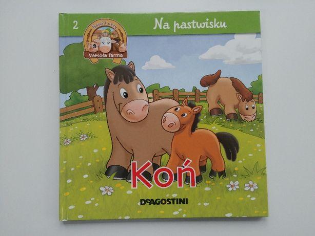 książeczka dla dzieci Koń