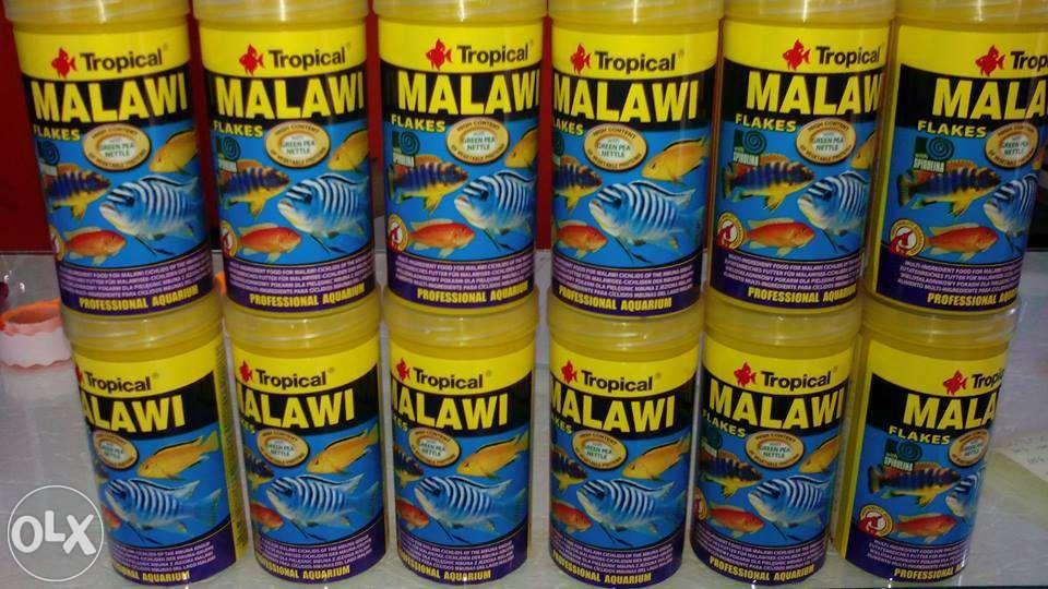 Tropical malawi flakes para ciclideos
