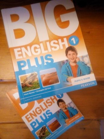 Big English Plus 1 (activity book / pupil's book)