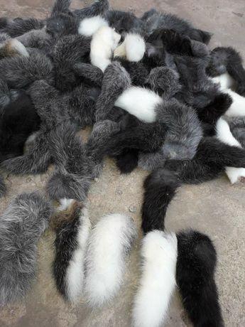 Продам хвосты кроликов