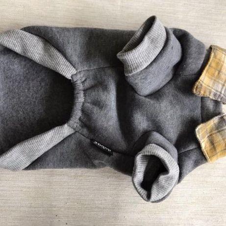 Śliczna bluza dla psa Dobaz rozmiar S