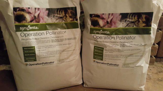 5KG Nasion kwiatów miododajnych dla pszczół 6 odmian pszczelarzy