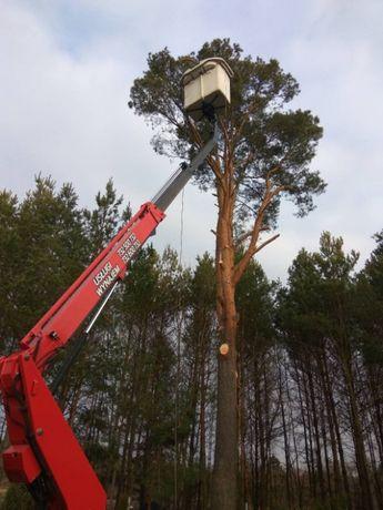 Wycinka drzew, podnośnik koszowy, zwyżka, prace na wysokości