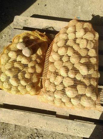 Ziemniaki Vineta (Wineta) z dowozem