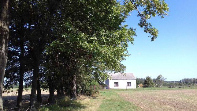 Dom na wsi na skraju lasu Czumsk Duży