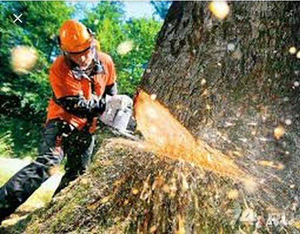 Спиляю дерево любой сложности