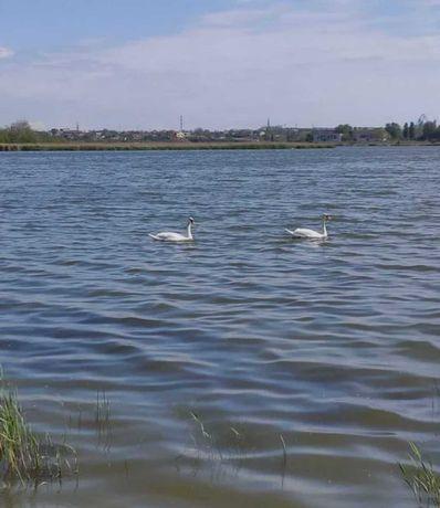 Участок возле озера