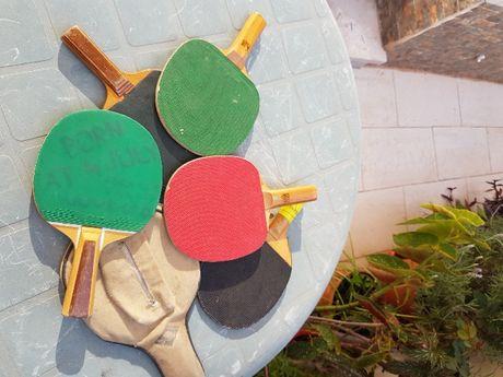 5 raquetes e 1 capa de Ténis de Mesa