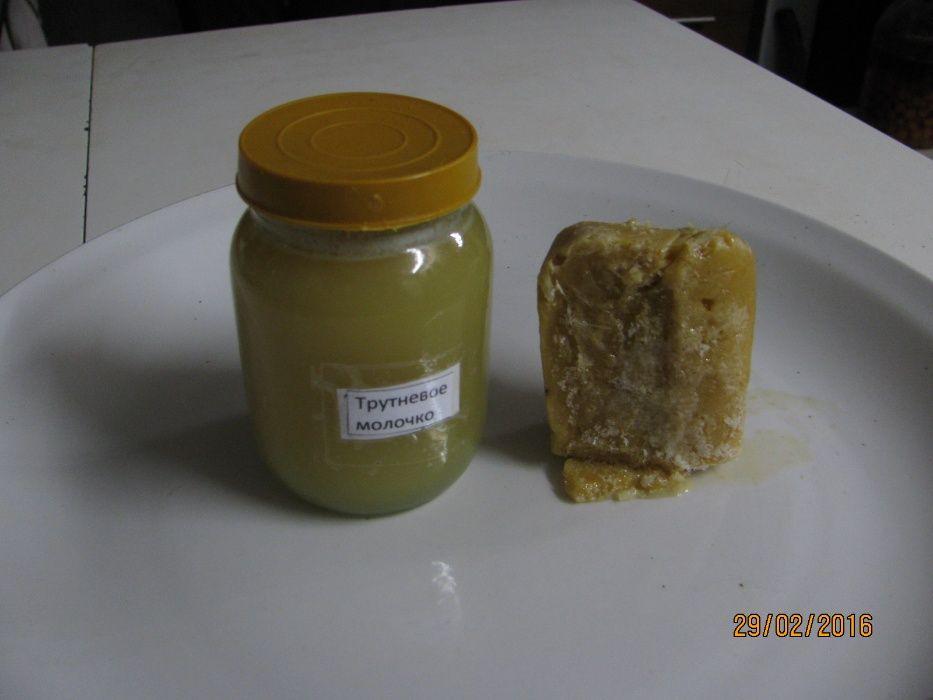 мед для детского питания,трутневый гомогенат,пыльца, перга Кролевец - изображение 1