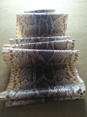 Шкура африканского питона.