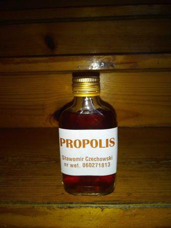 Gotowy Propolis pszczeli