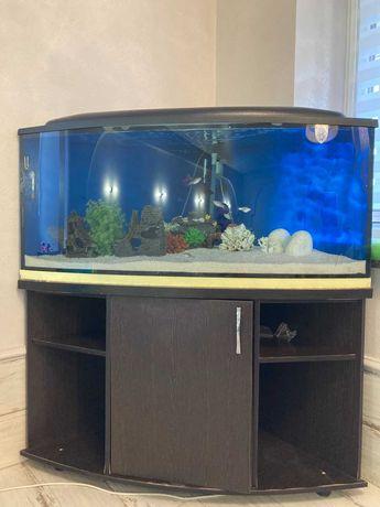 Продам акваріум 300л