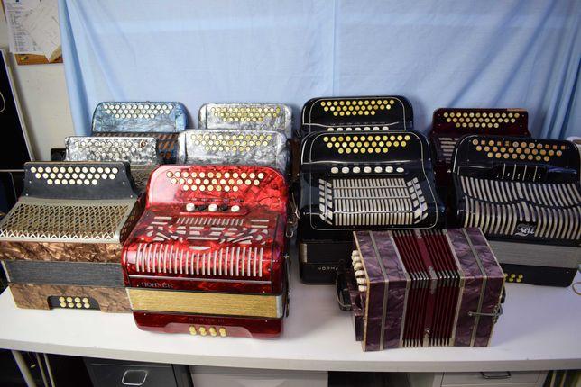 Coleçao de concertinas para venda