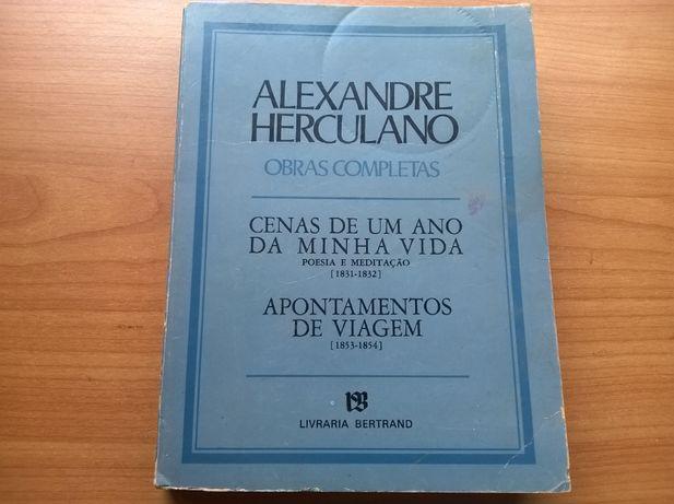 Cenas de Um Ano da Minha Vida - Alexandre Herculano (portes grátis)